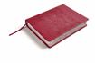 Imagen de Biblia de Apuntes Edicion Ilustrada RVR1960 (rosado simil piel)