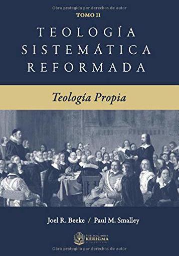 Imagen de Teologia Sistematica Reformada - VOL. II