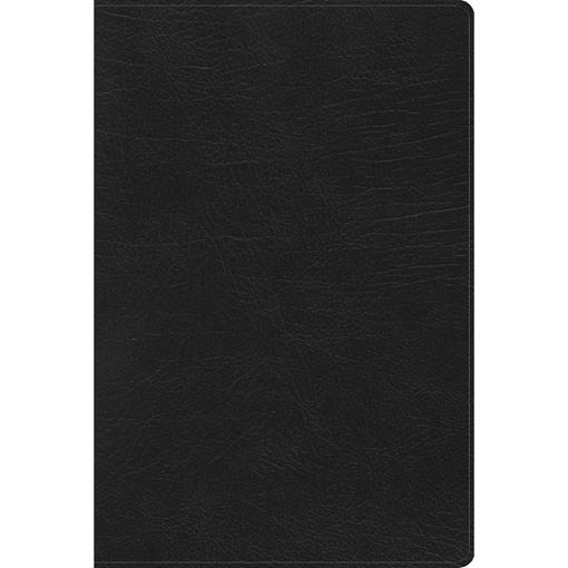 Imagen de Biblia de Estudio Arcoiris RVR1960, negro simil piel con indice